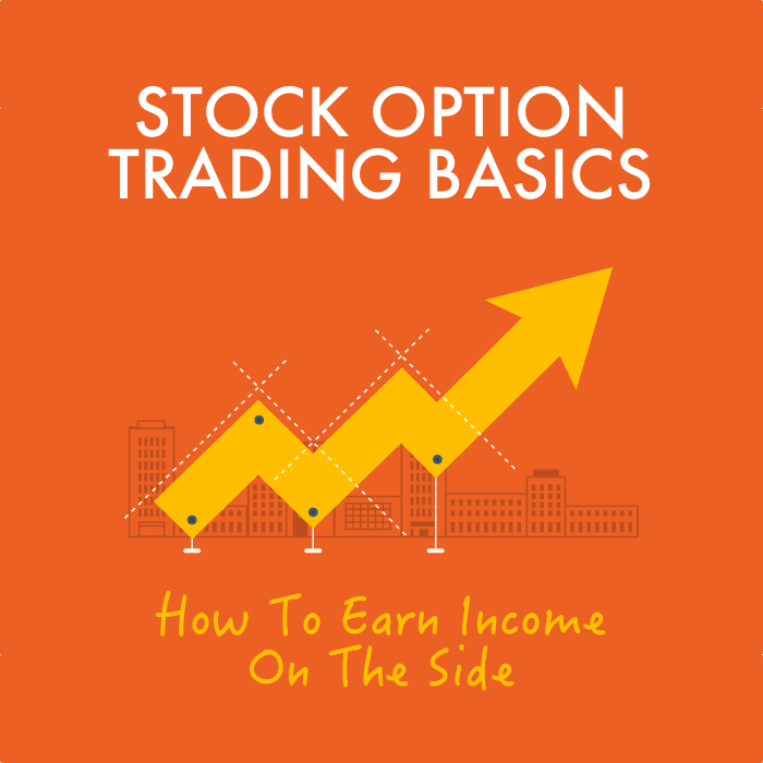 Beginners Guide To Stock Options (Mini-Series)
